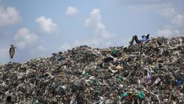When it Comes to Fueling Waste Crisis, US Tops Global List
