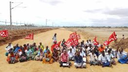 Tirunelveli Farmers Assured Compensation
