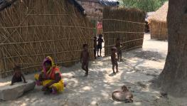 9 Deaths in 1 Month, Musahars in UP Battle With Malnutrition