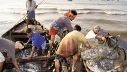 Fisherfolk Fear Corporatisation Through Maritime Fisheries Bill