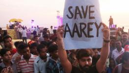 SC Stays Felling of Trees in Mumbai's Aarey, to Hear PIL on October 21