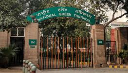 Centre Tightens Grip on NGT with Latest Appointments