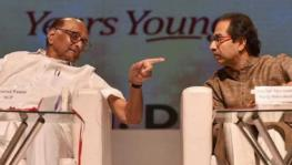 Sharad Pawar and Uddhav Thackeray