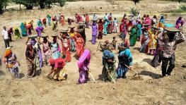 'MGNREGA Allocation Slashed by Rs 9,000 Crore Amid Alarming Rural Distress'