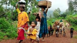 COVID-19 and Lockdown Threatening Livelihoods of Tribal Communities and Other Forest Dwellers: Report