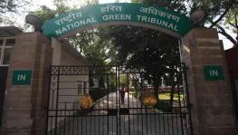 A Week Before NGT Order Flagged Concern