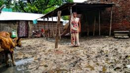 Income and Food Security in Bihar's Bairiya Village