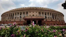 Rajya Sabha Polls: NDA Strengthens Position with 100 MPs in 245-Member House