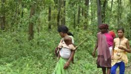 Claims of Forest Dwellers in Nine months