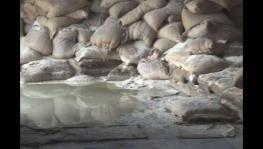 Rotten foodgrain bags in FCI warehouse, Kesariya.