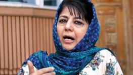 PDP Leaders Not Allowed to Convene for First Meeting After Abrogation of Article 370