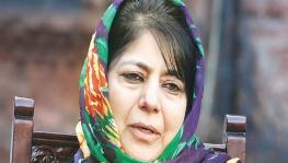 'Will Take Back What was Snatched on August 5': Mehbooba Mufti after Release from 14-month Detention