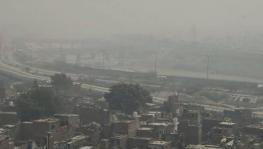 Air Pollution May Account for 15% of COVID-19 Deaths Worldwide, Says New Study