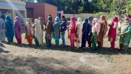 J&K Holds Maiden District Development Council Polls; West Pak Refugees Vote for First Time