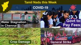 TN This Week: Cyclone Nivar Causes Severe Crop Damages, North Chennai Residents Allege Neglect, Over 50,000 Detained During Nov 26 Strike
