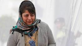 Militancy in Kashmir has Increased Under BJP Rule, Says Mehbooba Mufti