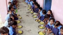 What Lessons Can We Learn From Strategies to Deliver Meals to School Children During COVID-19 in India and the USA?