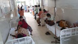Mysterious Eluru Illness: Source of Contamination Remains Unidentified