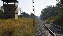 railway track in Rajaji Tiger Reserve