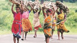 Chhattisgarh: Tribal Families Continue to Face Evictions Despite Land Claims