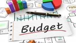 Rs 30,757 Crore Grant in Union Budget Fails to Impress J&K
