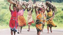 chattisgarh tribal women.