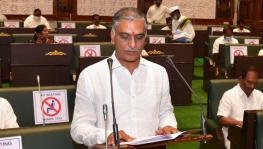 finance minister T Harish Rao