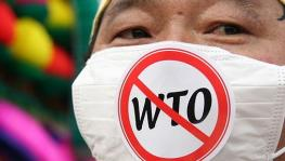 WTO Protest.jpg