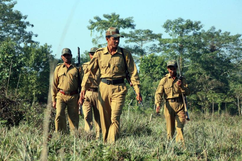 Forest Guards shot in Madhya Pradesh