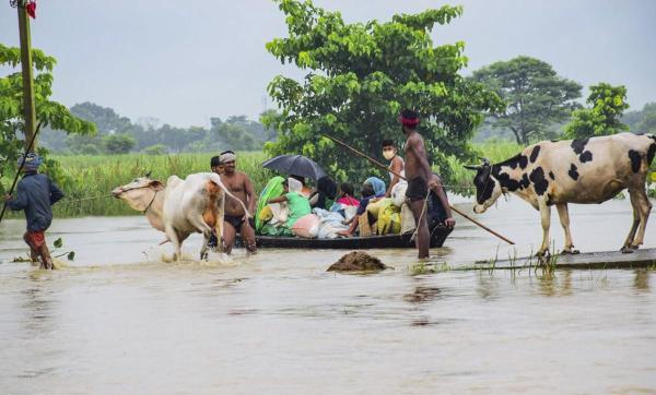 Bihar Floods: Farmers' Hope for Bumper Kharif Crops