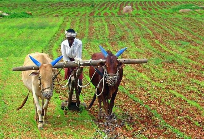 Maharashtra to Have Statewide Agitation Against Farm and Labour Bills