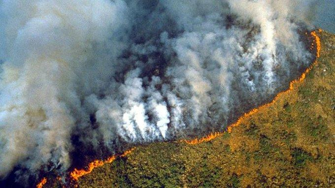 Amazon Forest Fires Continue Unabated Amid Pandemic, Raise Risk of Future Outbreaks