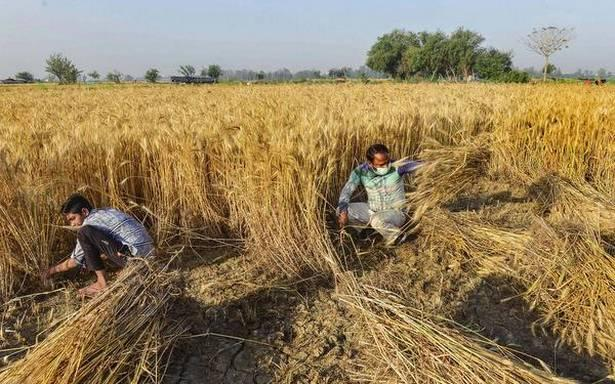 Farm Laws: How Punjab is Organising to Keep Protests Alive During Harvesting Season