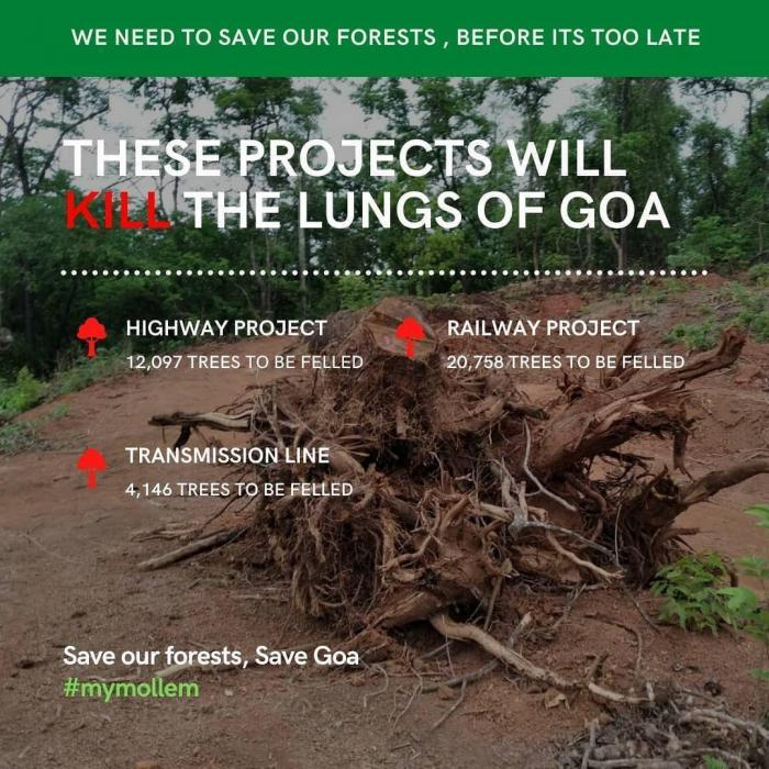 goa forest project