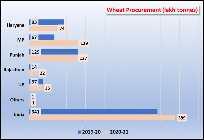 how madhya pradesh doubled wheat procurment
